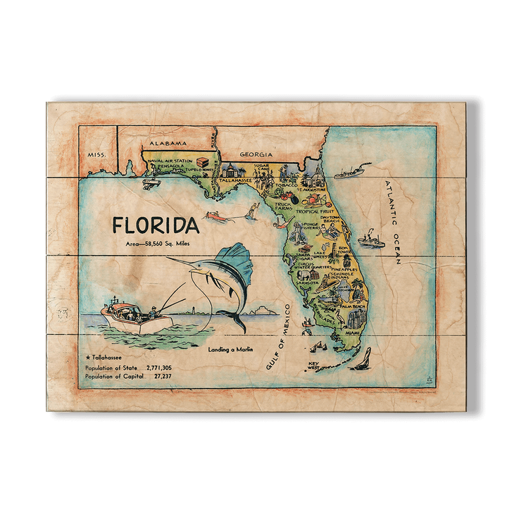 Map Of Georgia For Kids.Historic Vintage Kids Map Of Florida